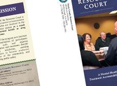 Court Tri-Fold Brochure