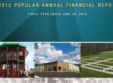 2012 Financial Report