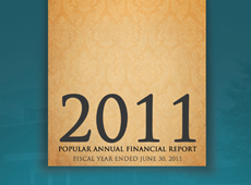 2011 Financial Report