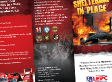Home Safety Tri-Fold Brochure